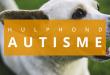 hulphond-autisme